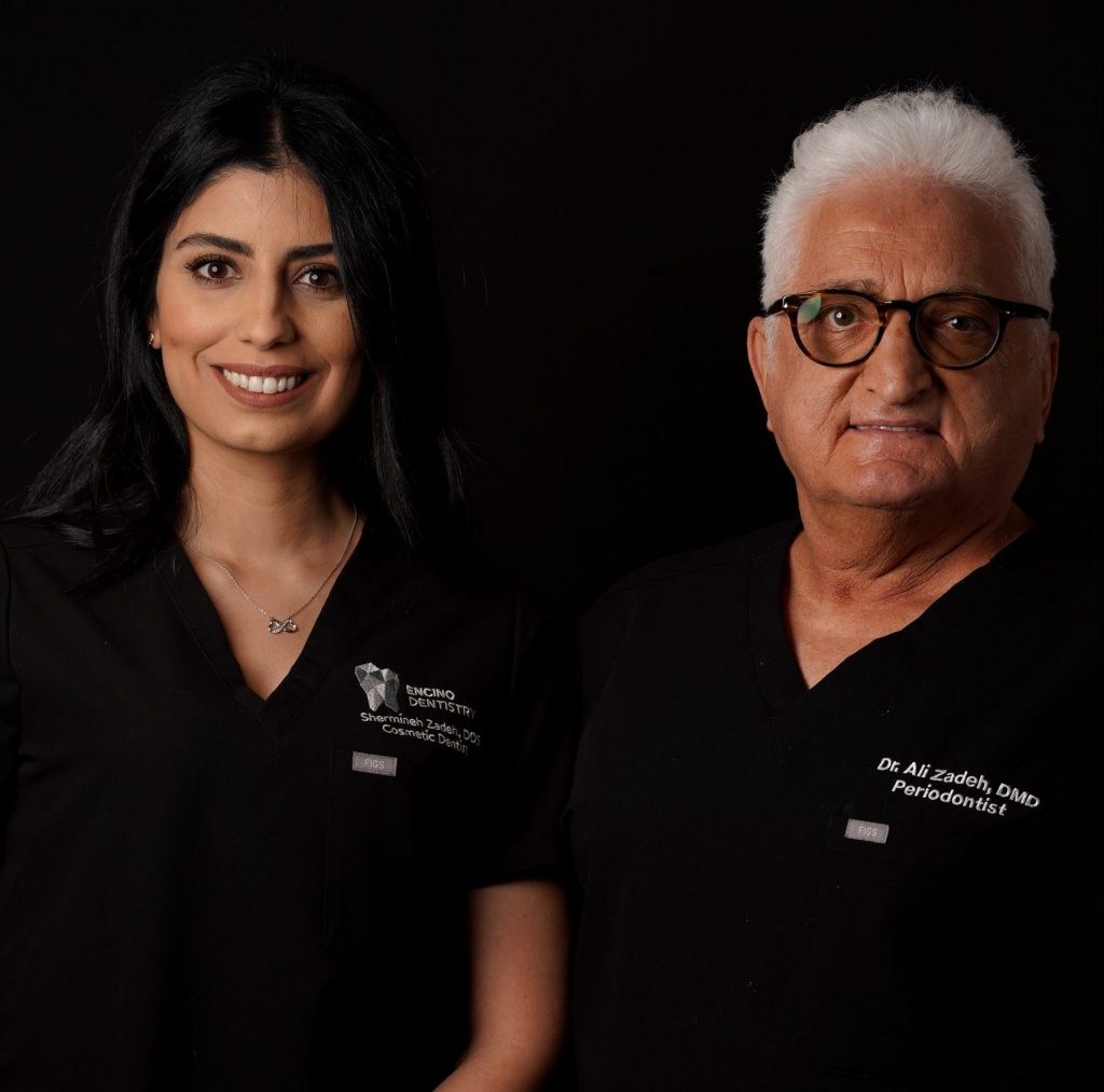 Dr Ali and Dr Shermineh Zadeh
